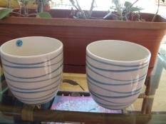 blue & white flower pots $30