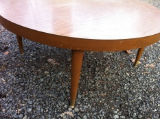 Merman coffee table $150